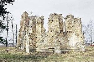 Ruinele catedralei catolice din Baia, jud. Suc...