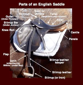 Saddle  Wikipedia