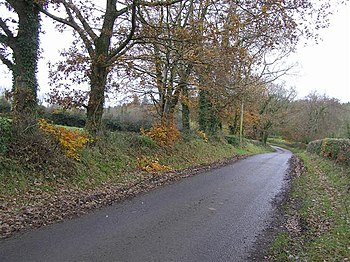 English: Road at Ballygittle The last of the A...