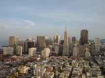 San Francisco Wikipedia Ting Vit