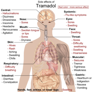 English: Main side effects of Tramadol. Red co...