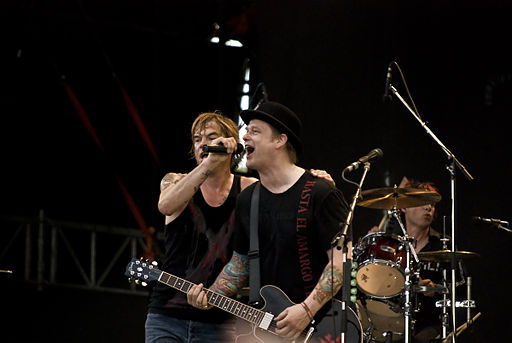 Sziget festival 2009 - day 2 die toten hosen 4