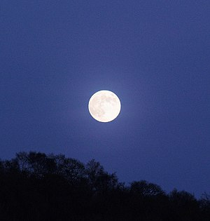 English: Moonlight becomes you