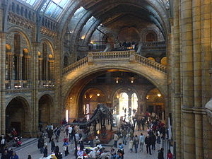 English: The Central Hall in Natural History M...