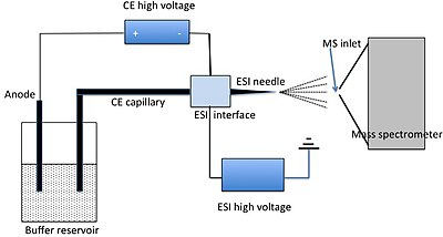 schematic diagram of mass spectrometer dump trailer wiring capillary electrophoresis spectrometry wikipedia