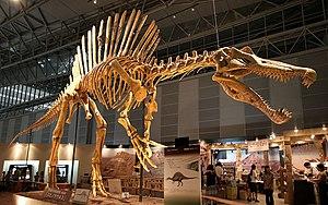 Spinosaurus - 01