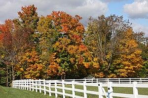 Beautiful fall day!