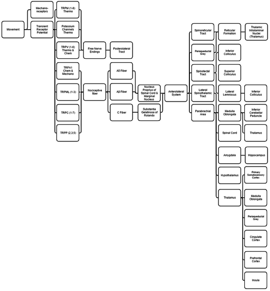 File:Comprehensive List of Relevant Pathways for the