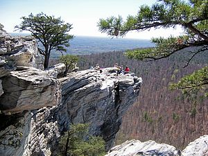 Hanging Rock, North Carolina. Trees are Pinus ...