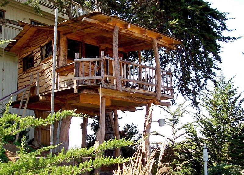 File:Tree house.jpg