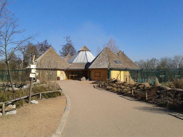 Lupa Zoo Wikipedia - Year of Clean Water