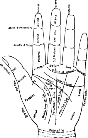 English: Chart of the Hand.