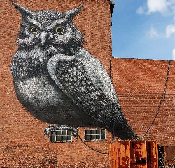 Roa Kunstenaar - Wikipedia