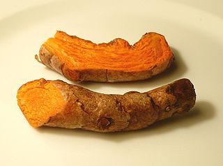 https://i0.wp.com/upload.wikimedia.org/wikipedia/commons/thumb/6/67/Turmericroot.jpg/320px-Turmericroot.jpg