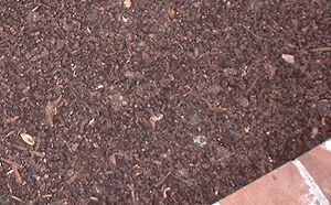 English: Aged mulch of coarse home compost Cat...