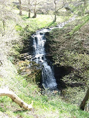 English: Scaleber Force. A lovely waterfall ne...