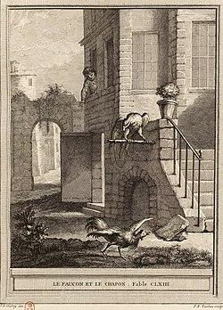 Le Faucon Et Le Chapon : faucon, chapon, Faucon, Chapon, Wikipédia