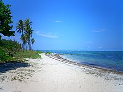 Image Result For Virginia Key Mountain