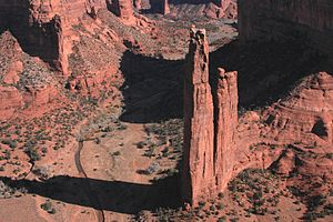 English: Spider Rock Overlook on the rim of Ca...