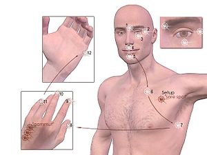 EFT-tapping points