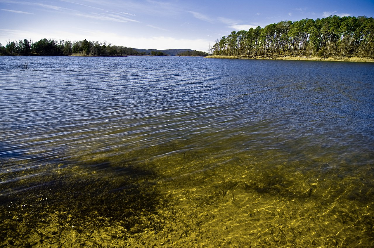 FileLake in the Ouachita National Forest Arkansasjpg