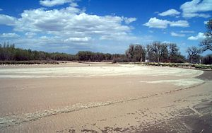 English: Dry stream channel during drought con...