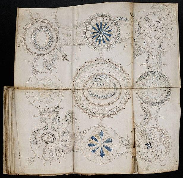 File:Voynich Manuscript (158).jpg