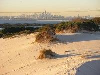 Cronulla sand dunes - Wikipedia