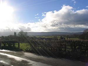 English: Sun rays and hedgerow, West Hay Rd, W...
