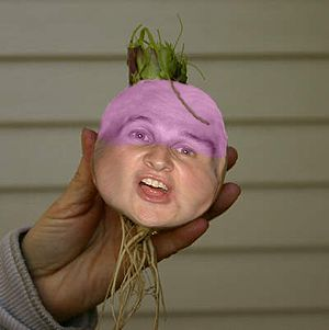 English: A Turnip