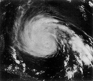 Hurricane Gloria caused 7 deaths in Massachuse...