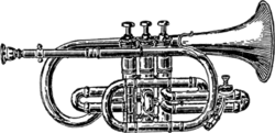 Short model traditional cornet, also known as a