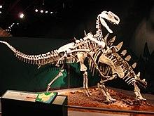 Um kentrosaurus e um monolofosaurus em um duelo.