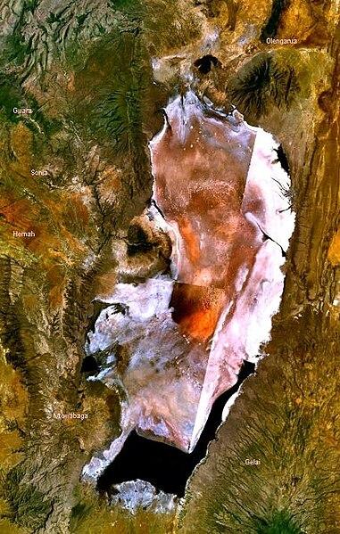 https://i0.wp.com/upload.wikimedia.org/wikipedia/commons/thumb/6/6d/Lake_Natron_satellite.JPG/381px-Lake_Natron_satellite.JPG