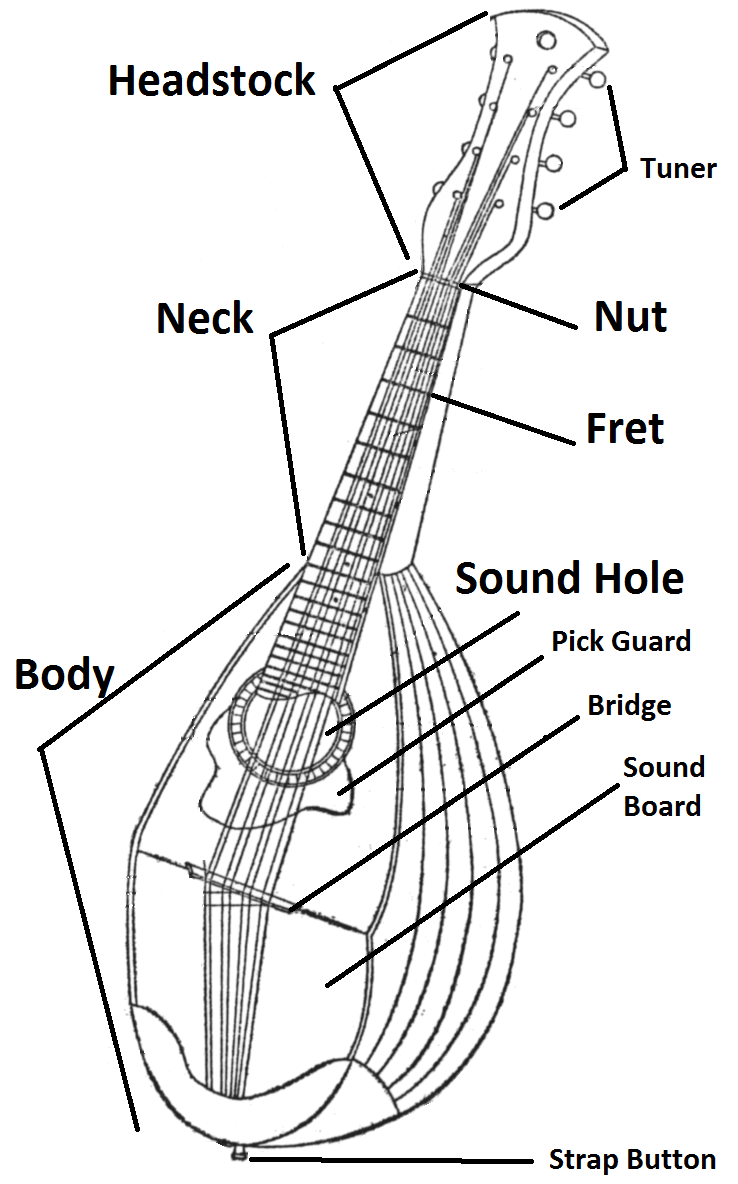 hight resolution of parts of the mandolin parts of the mandolin schematic