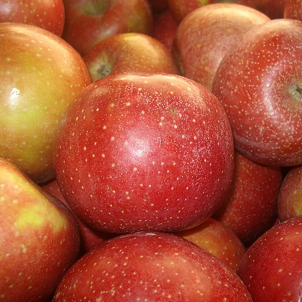 File:Red Delicious apples.jpg