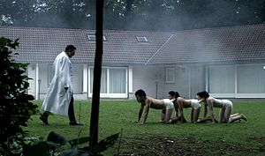 English: A still image from The Human Centiped...