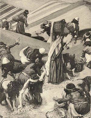 The Gathering of the Manna, by James Tissot