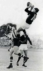 澳式足球 - 維基百科,自由的百科全書
