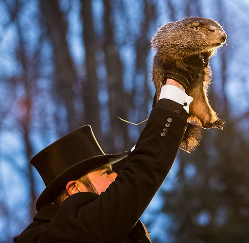 Punxsutawney Phil 2018 (cropped)