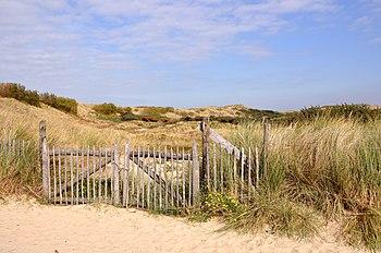 English: Bredene (Belgium): Paelsteenpanne nat...