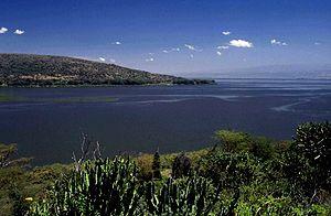 Deutsch: Lake Naivasha