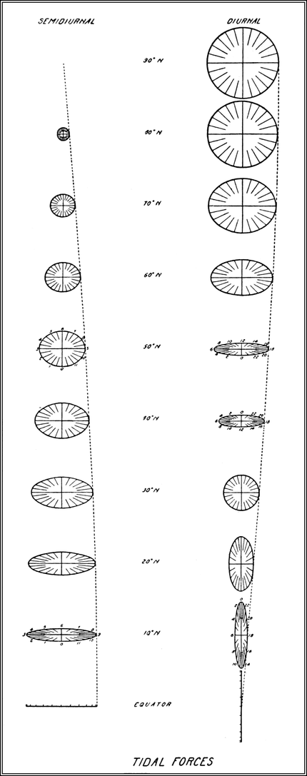 S Relationship The Moon And Tides Diagram