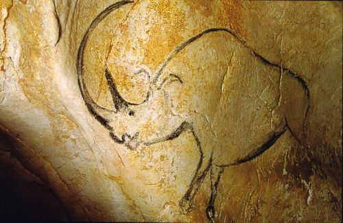 Woolly rhino cave painting in Chauvet
