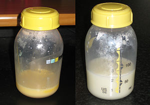 English: Comparison of expressed colostrum and...