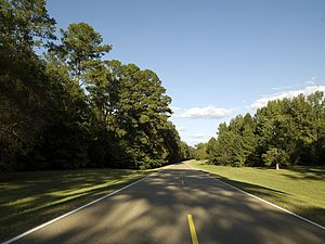 English: Natchez Trace Parkway, Mississippi ME...