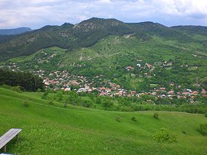 English: View of the Brăeşti village of the Br...