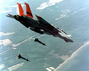 An F-14A/B Tomcat aircraft assigned to the Str...