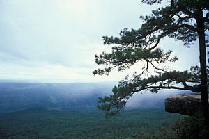 Lom Sak Travel Guide At Wikivoyage