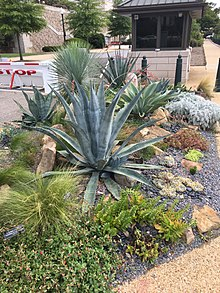 diagram ideas how to wire a house for electricity xeriscaping - wikipedia